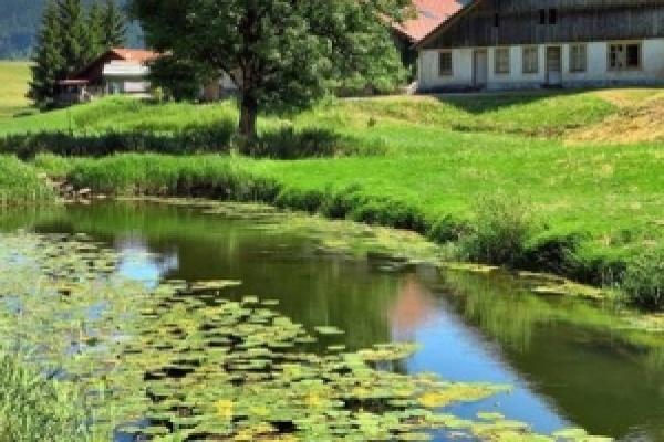 ATELIER Préval « Faire ses propres produits de jardinage »